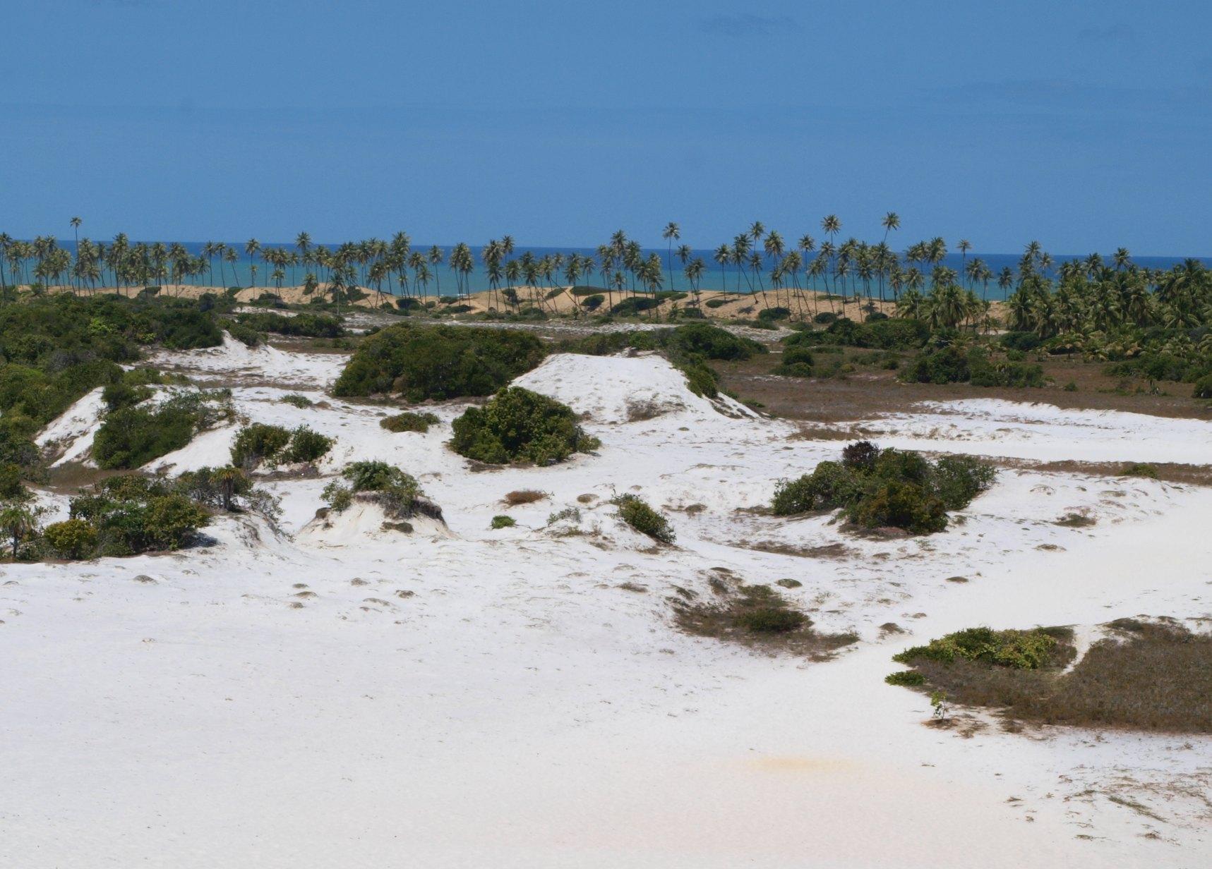 Diogo, Estado de Bahía